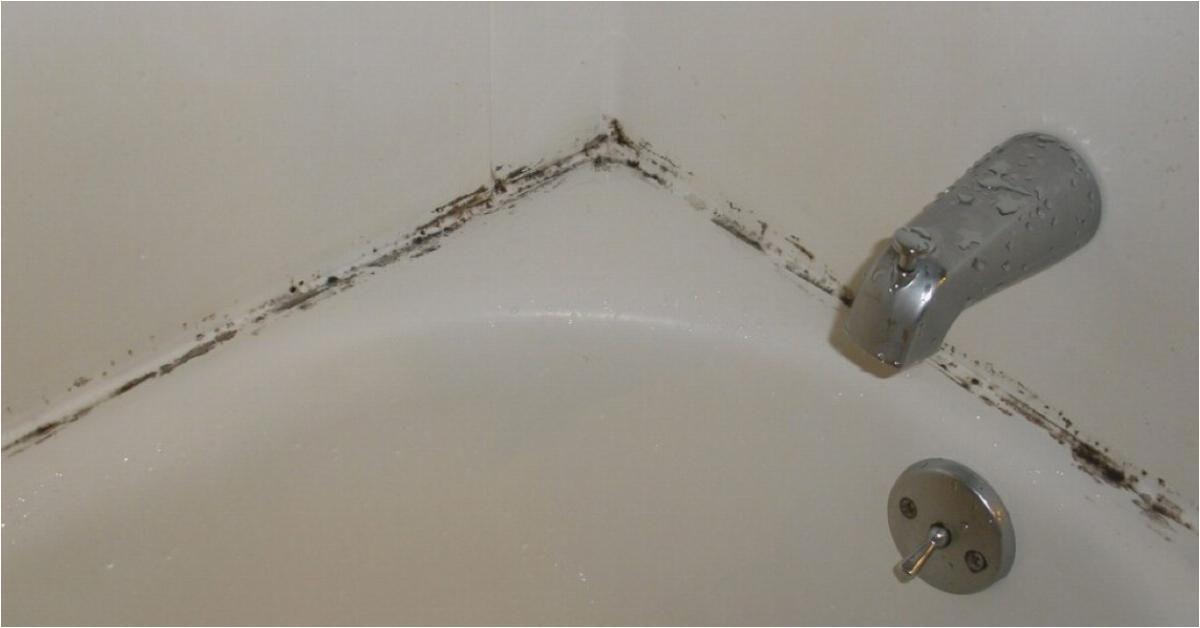 Verkalkte Badezimmer Fliesen Reinigen so Entfernt Ihr Schimmel Vom Badewannenrand