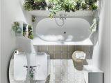 Badezimmer Deko Pflanzen Die Besten Pflanzen Fürs Badezimmer
